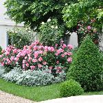 Gorgeous gardens