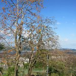 Makinohara Park
