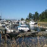 Neighboring marina