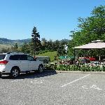 Large carpark & wheelchair friendly - Davison Orchards