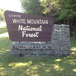 ‪White Mountain National Forest‬