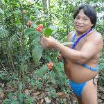 Embera Medicine Man