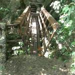 Bridge going to middle waterfall!