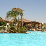 pool & tropical bar