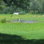 The Manzi Mmoja Sporting Field