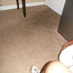 dirt on carpet entering room
