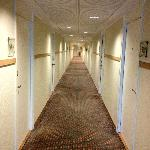 Hallway inside, carpets need a good clean