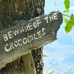 sin comentarioss !!!! Los cocodrilos estaban todos los dias !!