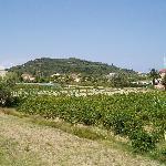 view from litsa