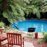 Guests Pool