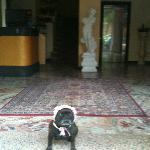 ingresso dell'hotel delizia Rimini