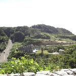 A hillside view from the park