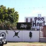 Pro Hart Gallery