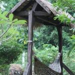 Hamak dans le jardin