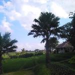 Bali Wisata Bungalows Foto