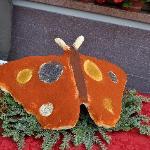 la farfalla di burro e marfgarina