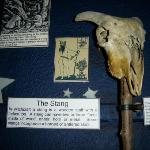 One of the many unique exhibits at the Museum of Witchcraft.
