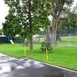 Lawn w/playground