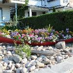 Pretty flowers in a canoe by the front of the motel.