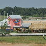 Chuys In Bowling Green KY