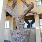 Le cactus qui permet d'identifier l'entrée