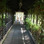 Entrance through a plant tunnel to a function room