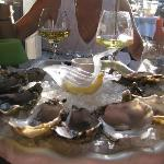Oysters-Superb
