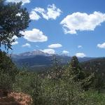 A view of Pikes Peak from one of the many trails.