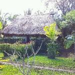 tradtional fijian house