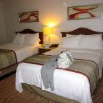 our two double bed room