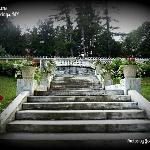 Stairs to Rock Garden