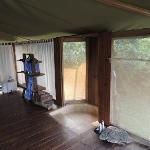 Outdoor shower, but completely covered