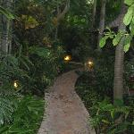 KP's Gardens at twilight