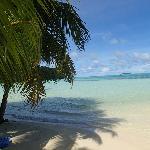 Photo of Carp Island Resort