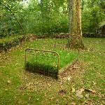 Un lit d'herbe pour la sieste ?
