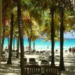 una buena vista desde la playa