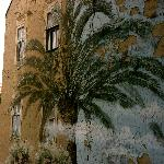 view on a palmtree :-)