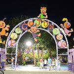 Parco Junior - Temporarily Closed