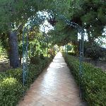 Il vialetto del giardino