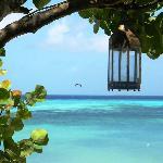 Scorcio dell'isola