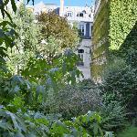 Vista dalla nostra camera (giardino dell'hotel)