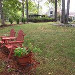 Back yard area