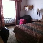 room 229