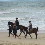 los caballos y sus sorpresitas en la playa