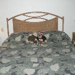 101 main bed