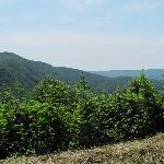 From the Blue Ridge Parkway