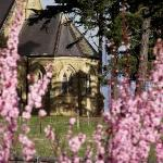 Church through the blossoms