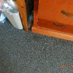 nasty carpet