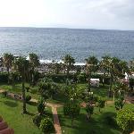 hotel's garden 2