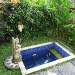 The pool of the Raja Villa
